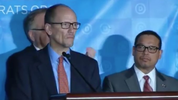 What Does The DNC Deputy Chair Do?